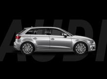 Eurodyne Audi Products